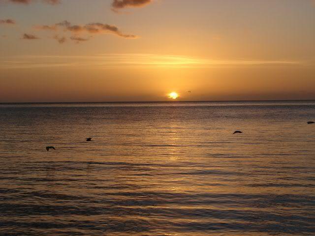 Croisière aux Grenadines Edition 2008 !!! DSC00923