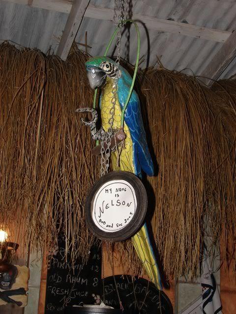 Croisière aux Grenadines Edition 2008 !!! DSC00952
