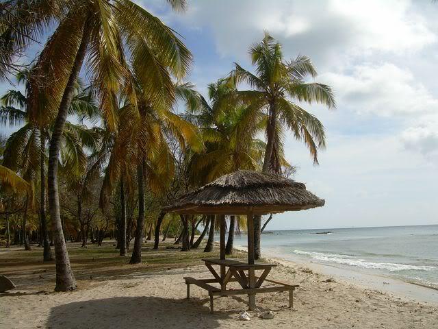Croisière aux Grenadines Edition 2008 !!! DSCN3247-1