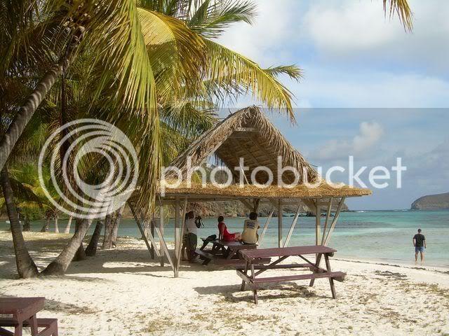 Croisière aux Grenadines Edition 2008 !!! DSCN3272-1