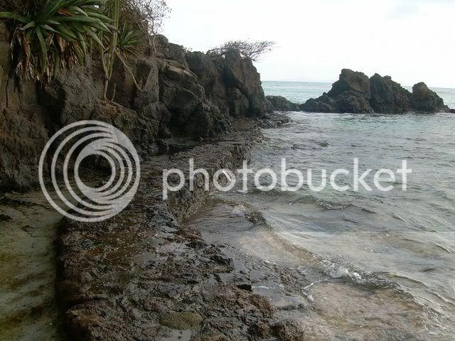 Croisière aux Grenadines Edition 2008 !!! DSCN3277-1