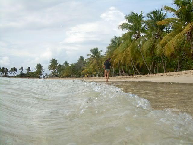 Croisière aux Grenadines Edition 2008 !!! DSCN3440