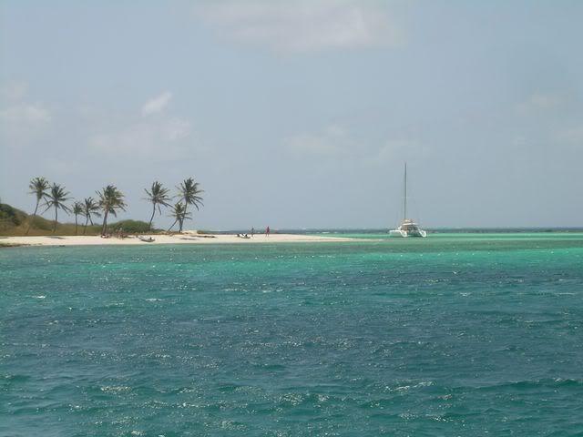 Croisière aux Grenadines Edition 2008 !!! DSCN3551