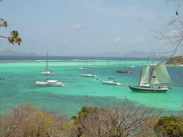 Croisière aux Grenadines Edition 2008 !!! DSCN3580