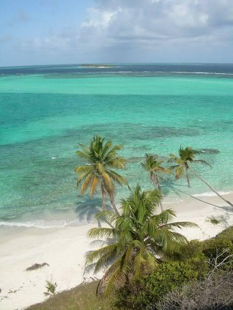 Croisière aux Grenadines Edition 2008 !!! DSCN3630