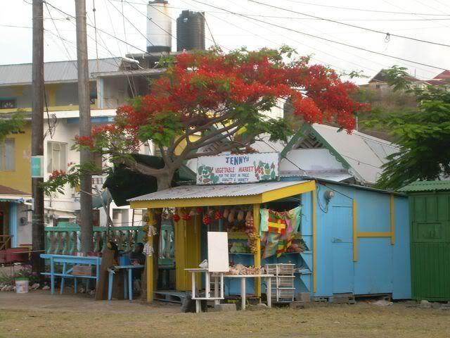 Croisière aux Grenadines Edition 2008 !!! DSCN3752