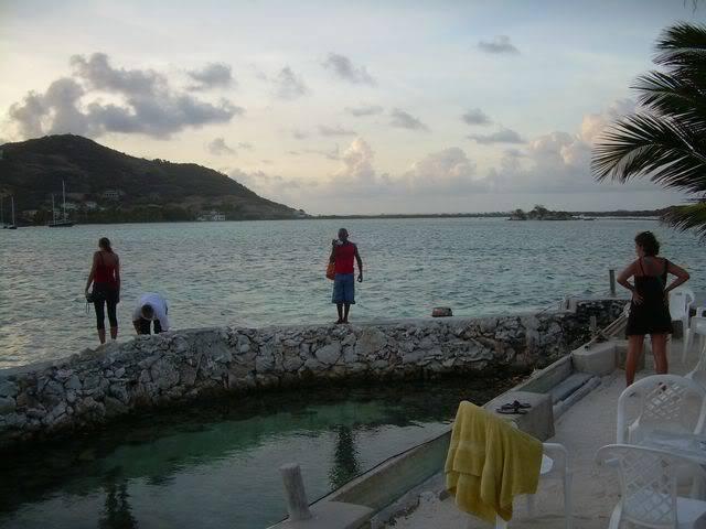 Croisière aux Grenadines Edition 2008 !!! DSCN3762