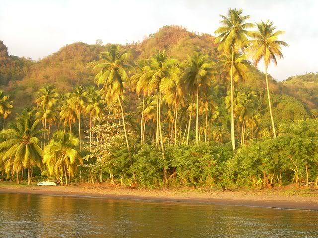 Croisière aux Grenadines Edition 2008 !!! DSCN3805