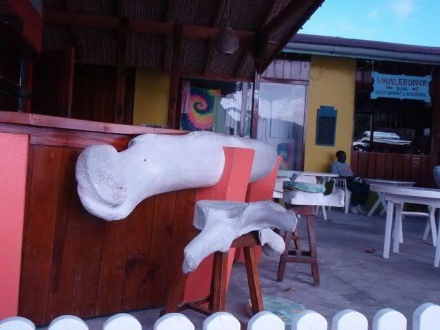 Croisière aux Grenadines Edition 2008 !!! P6010254