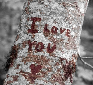 I Love You Pictures, Images and Photos