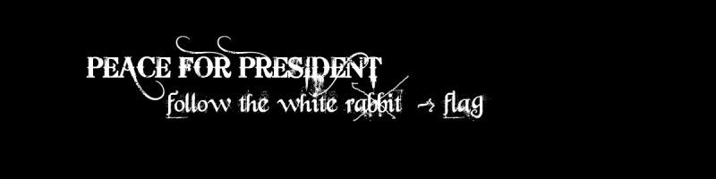 Peace For President