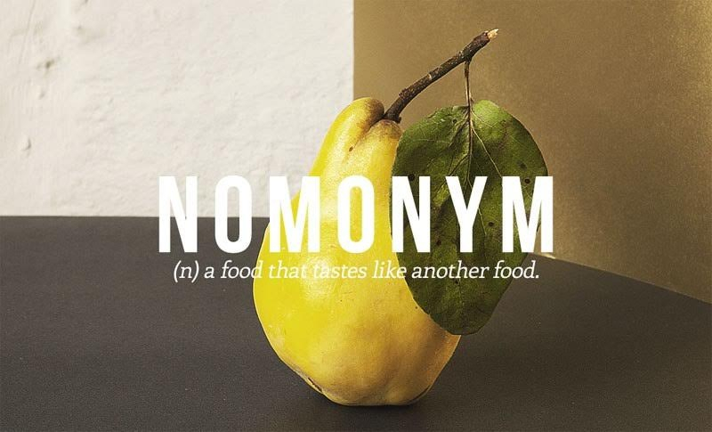 17 Funny Words English Language Needs to Add to Its Lexicon New-Words-14_zps9xygk0wf