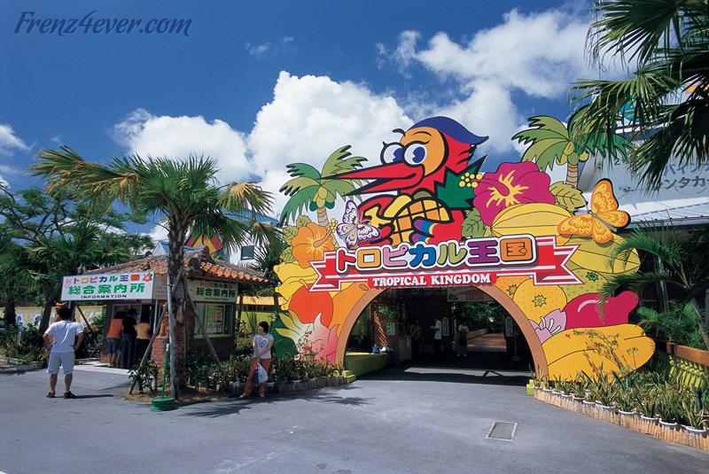 Traditional Okinawa - Page 2 OK32_zps190e3bac