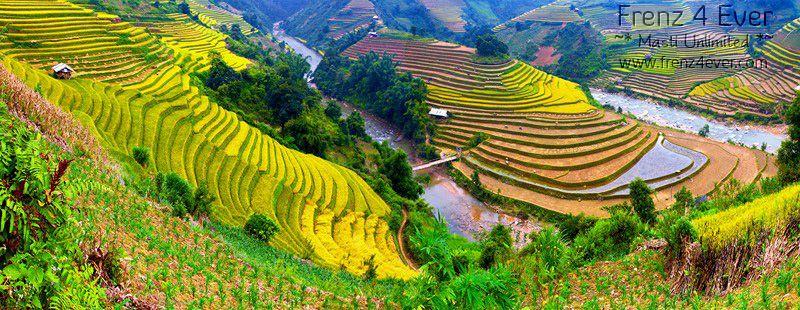 Beautiful Terraced Rice Fields Terraced-Rice-Fields-13_zps12811535