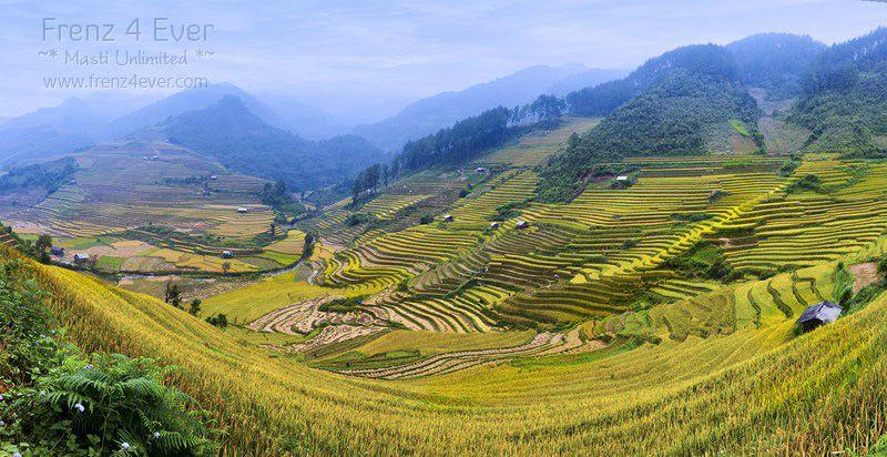 Beautiful Terraced Rice Fields Terraced-Rice-Fields-18_zps12132047