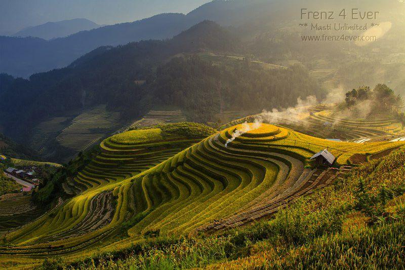 Beautiful Terraced Rice Fields Terraced-Rice-Fields-19_zpsa3b7605f