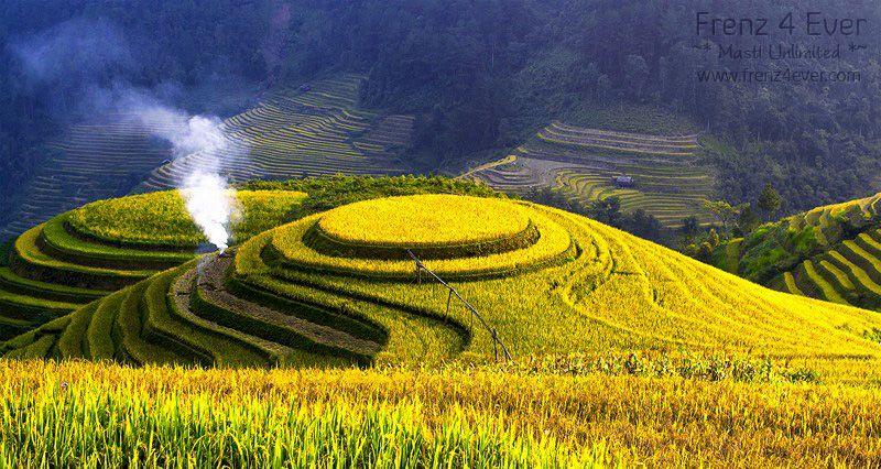 Beautiful Terraced Rice Fields Terraced-Rice-Fields-20_zpsbec17ec9