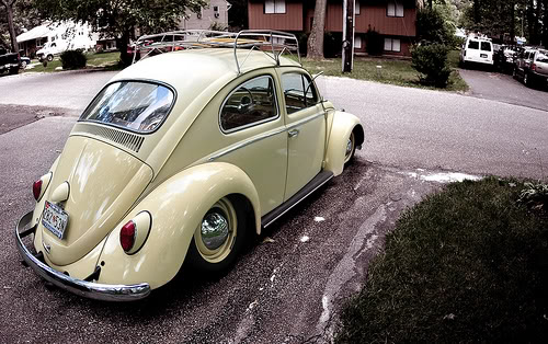 favorite VW pics? Post em here! 3672706043_4fbbd9e536