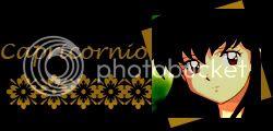 Predicciones Zodiacales 2009 Capricornio