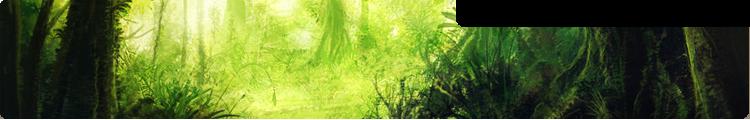 Fin del mundo Bosque