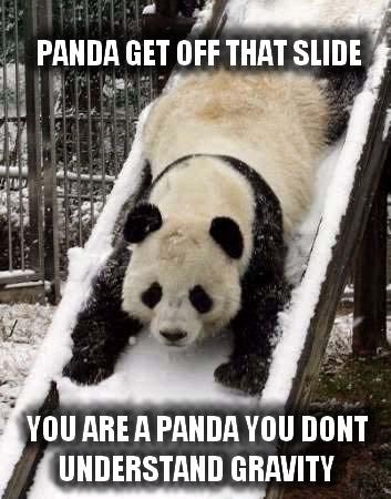 I need my clan! Panda