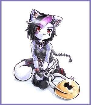 O Reino dos Gatos (Filme) Cat