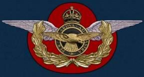 photo RAF_209_Pilot_Combat_Fighter_Badge_plaque.jpg