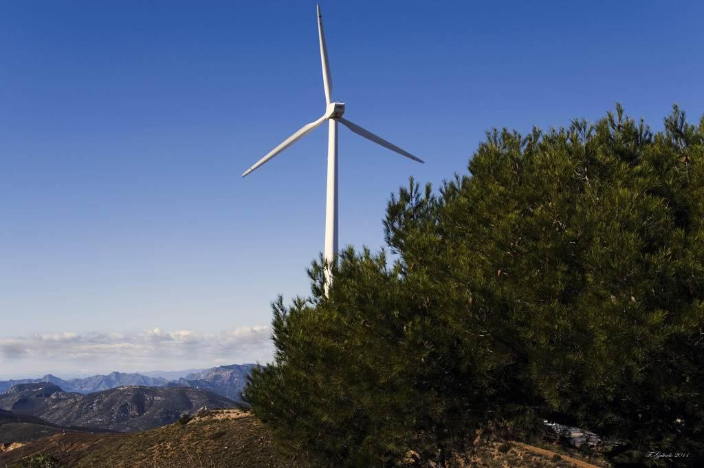 La Sierra Minera - Página 9 DSC_0513