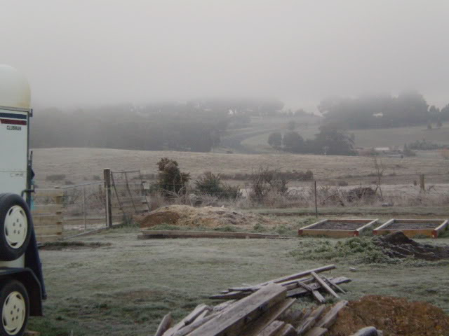Winter Wonderland Here In The Goldfields P6191111
