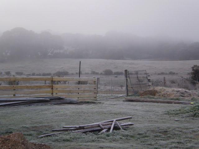Winter Wonderland Here In The Goldfields P6191112