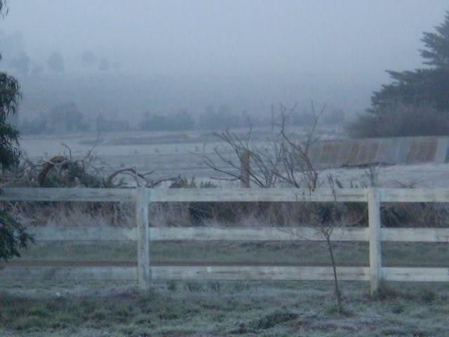Winter Wonderland Here In The Goldfields P6191118