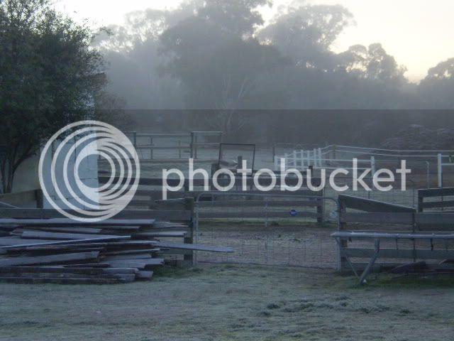 Winter Wonderland Here In The Goldfields P6191123