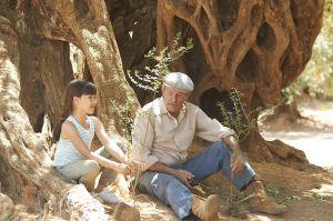 """2015 - """"El Olivo"""" [Nuevo largometraje] - Página 4 1435246341_721080_1435311351_sumario_normal_zpsznmfhmiq"""