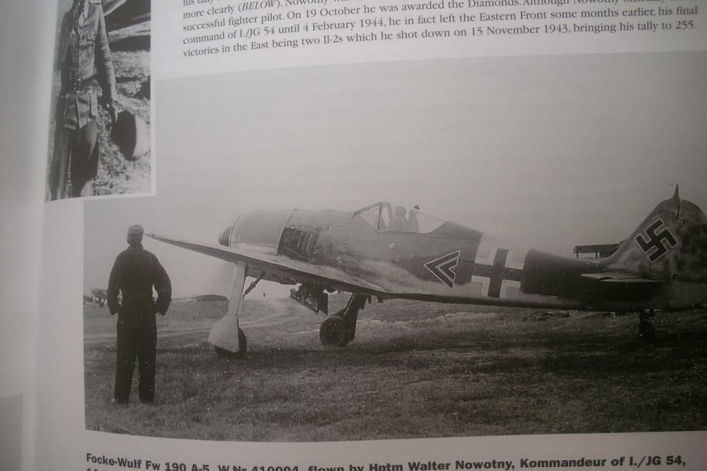 Focke Wulf 190 A-5 Walter N. Hasegawa 1/48 (Terminado) - Página 3 DSCI0538