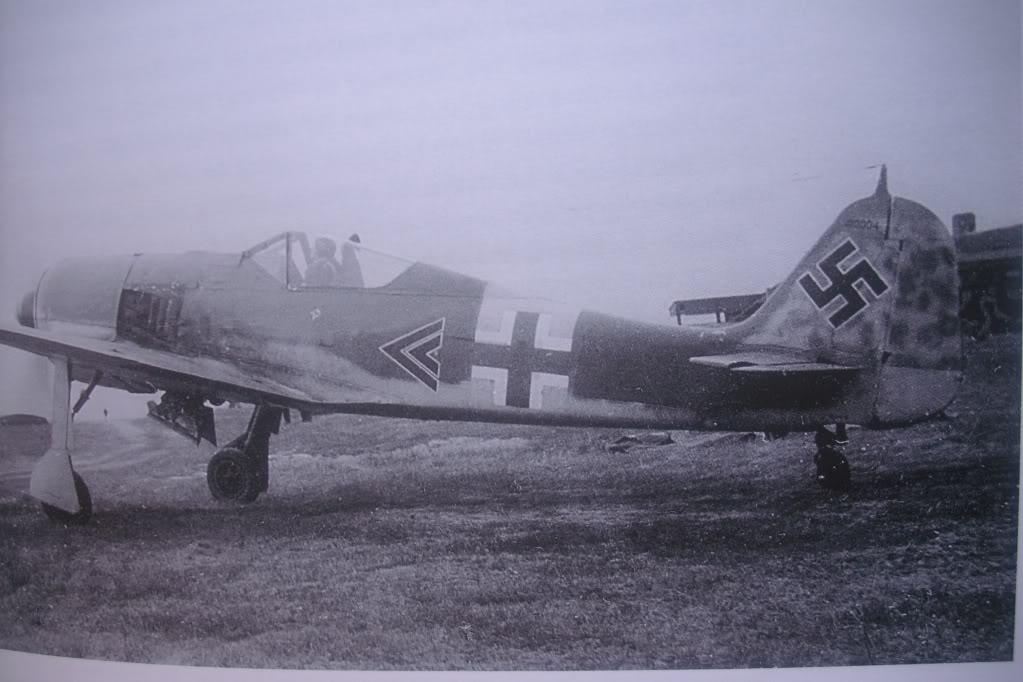 Focke Wulf 190 A-5 Walter N. Hasegawa 1/48 (Terminado) - Página 3 DSCI0551