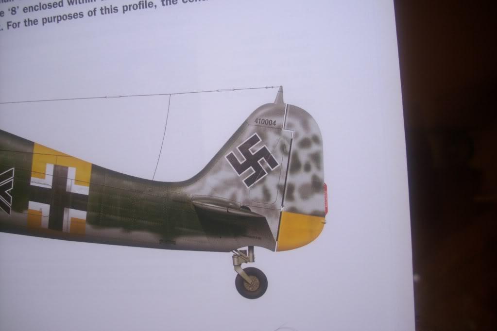 Focke Wulf 190 A-5 Walter N. Hasegawa 1/48 (Terminado) - Página 3 DSCI0553