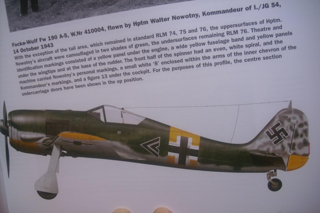 Focke Wulf 190 A-5 Walter N. Hasegawa 1/48 (Terminado) - Página 3 DSCI0554