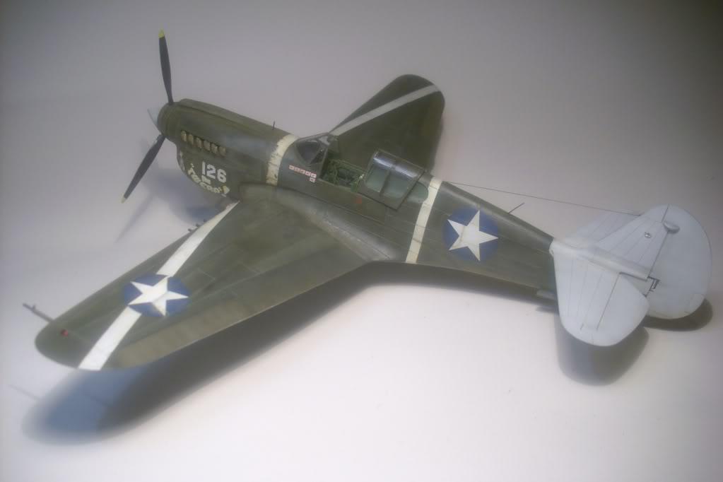 P-40M 1/48 Mauve DSCI0831