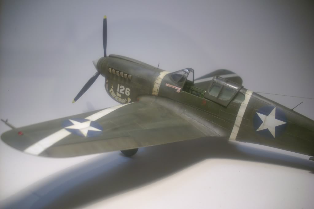 P-40M 1/48 Mauve DSCI0834