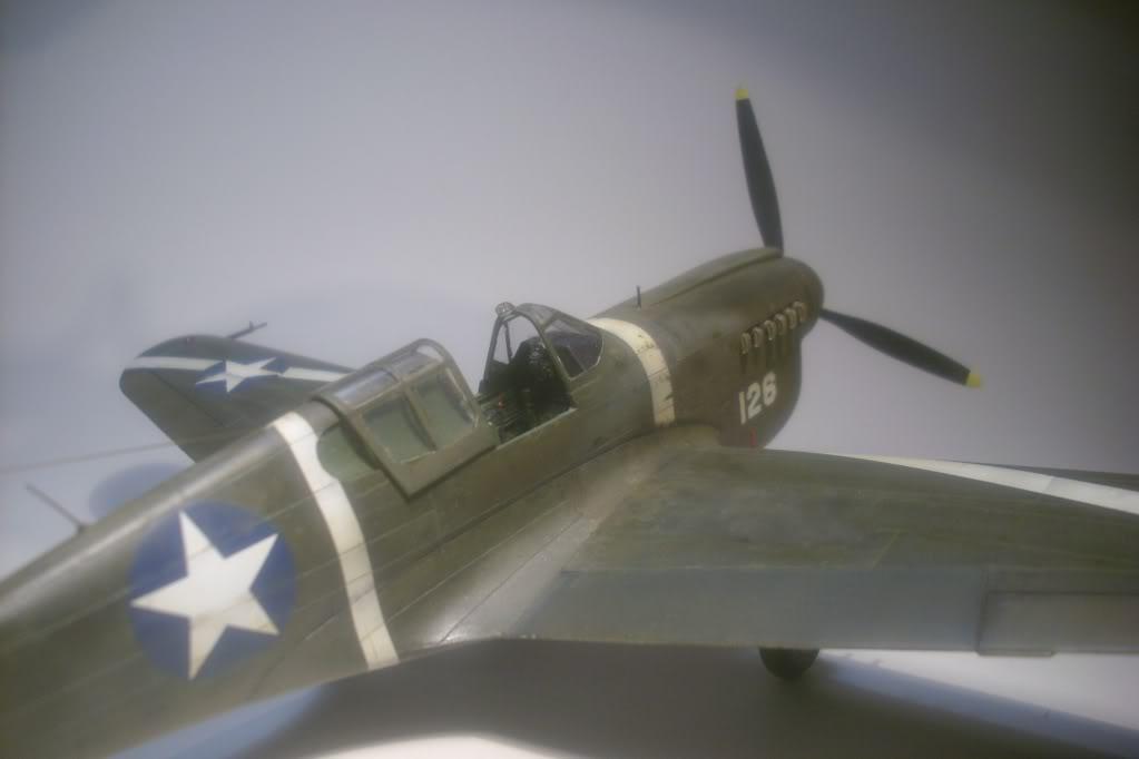 P-40M 1/48 Mauve DSCI0836