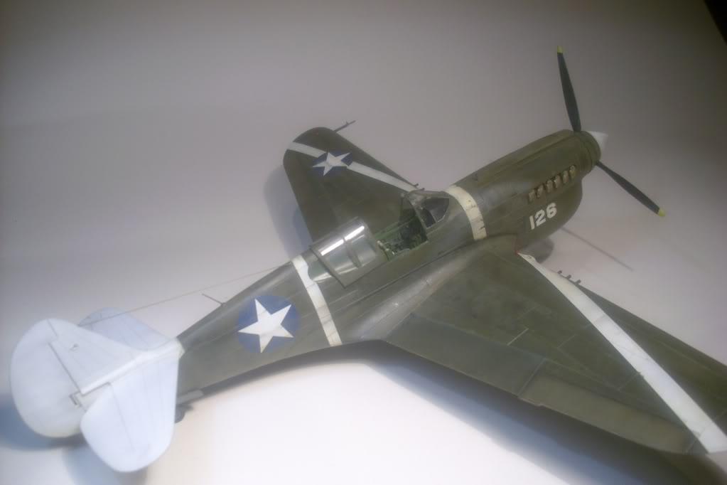 P-40M 1/48 Mauve DSCI0838