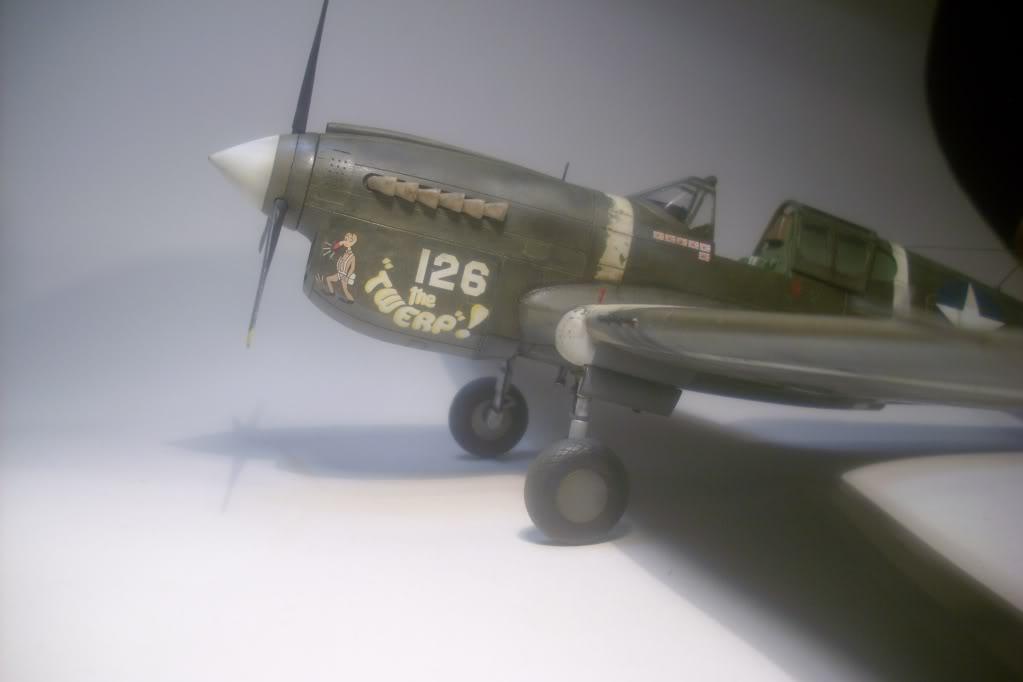 P-40M 1/48 Mauve DSCI0848