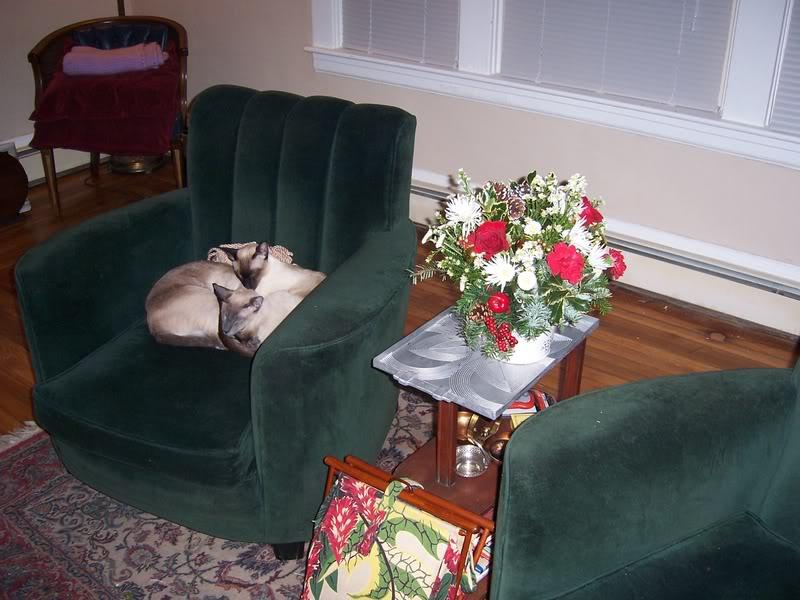 Christmas Decorations! CatFlowers1208