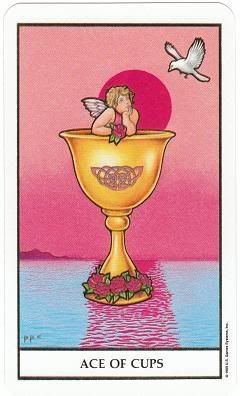 Today's Card - Connolly Tarot By Scamphill - Page 2 AceofCupsConnellyTarot_0005