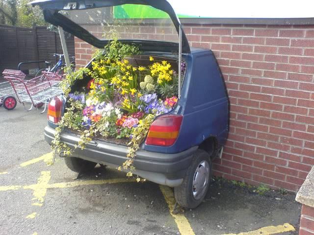 Random Funny Pictures Flowerpowerfez