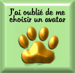 "Contact - ""Tours de Chats"" Oubliavatar"