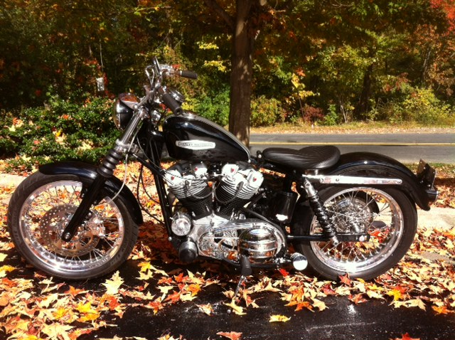 Little 75 Inch Family Affair XLCH Sportster 929131_zps184dc4ba