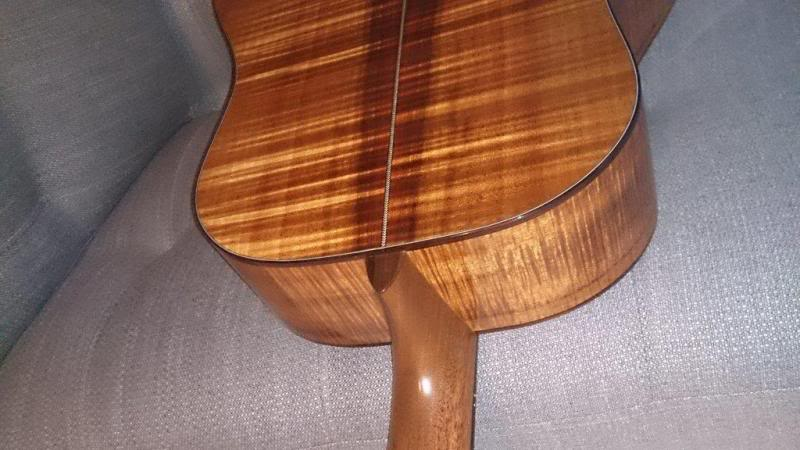 Le choix des bois pour un luthier - Page 2 DSC_0157_zps249b114c
