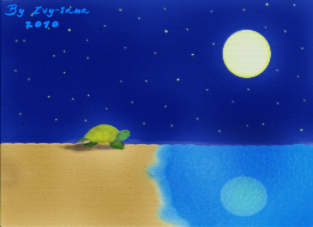 Ivy-sama's art Turtle