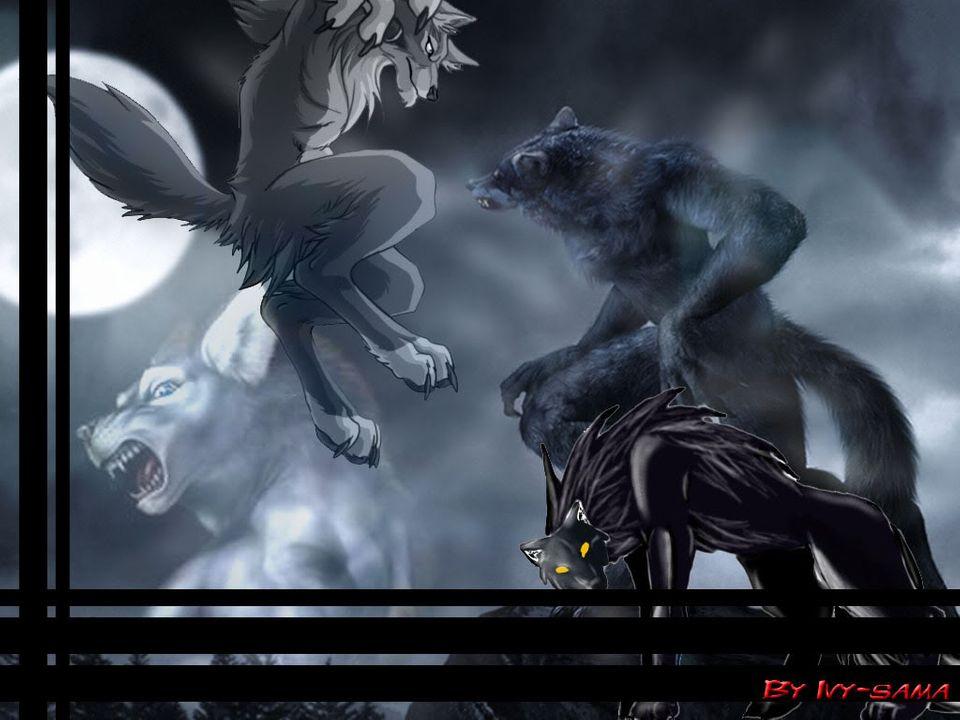 Ivy-sama's art WallWerewolf